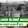 Müminlerin ölümü nasıldır, acı çekerler mi; kâfirlerin ölümünden farkı nedir?