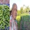 Çiftçiliğe Yenilikçi Bakışlarla Bakmalıyız