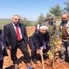 Ellek Kasabası Kırsalında Ağaçlandırma Faaliyeti